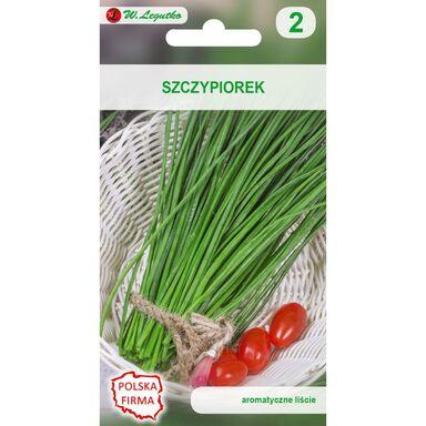 Szczypiorek MEDIUM LEAF nasiona tradycyjne 2 g W. LEGUTKO
