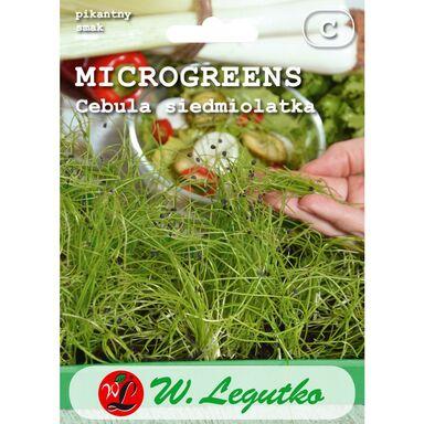 Cebula siedmiolatka nasiona tradycyjne 4 g W. LEGUTKO