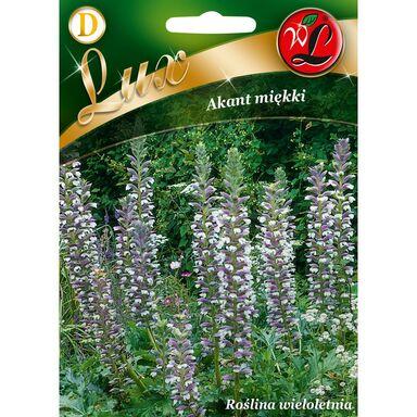 Akant miękki RÓŻOWY nasiona tradycyjne 2.5 g W. LEGUTKO