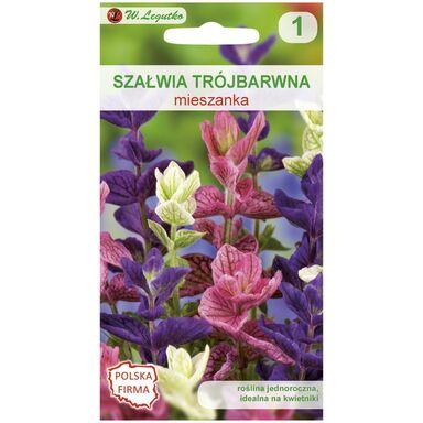 Nasiona kwiatów MIESZANKA Szałwia trójbarwna W. LEGUTKO