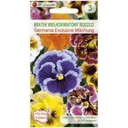 Bratek wielkokwiatowy Rococo GERMANIA EXCLUSIVE MISCHUNG nasiona tradycyjne 0.4 g W. LEGUTKO