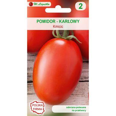 Pomidor gruntowy karłowy KMICIC W. LEGUTKO