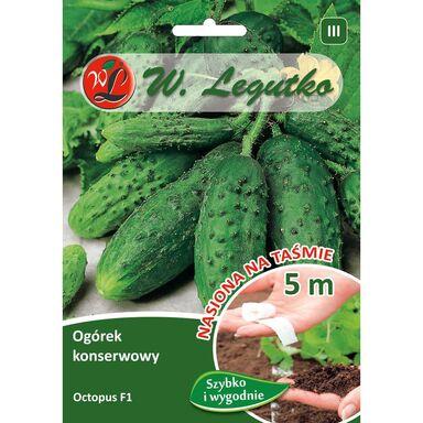 Nasiona warzyw OCTOPUS Ogórek gruntowy W. LEGUTKO