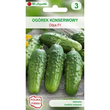 Nasiona warzyw ODYS F1 Ogórek konserwowy W. LEGUTKO