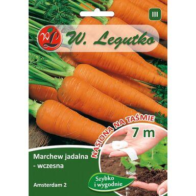 Nasiona warzyw AMSTERDAM 2 Marchew W. LEGUTKO