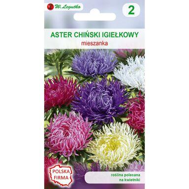 Nasiona kwiatów MIESZANKA Aster chiński igiełkowy W. LEGUTKO