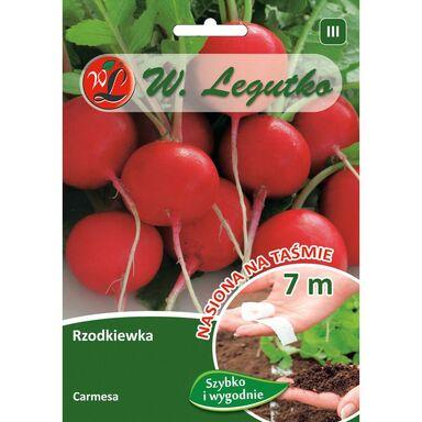 Rzodkiewka CARMESA W. LEGUTKO