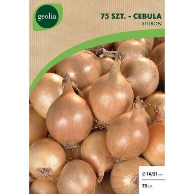 Cebulki warzyw STURON Cebula 75szt. GEOLIA