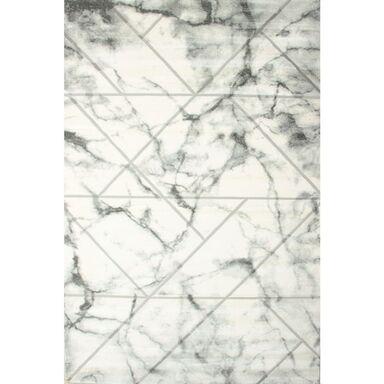 Dywan EVITA szary 120 x 170 cm