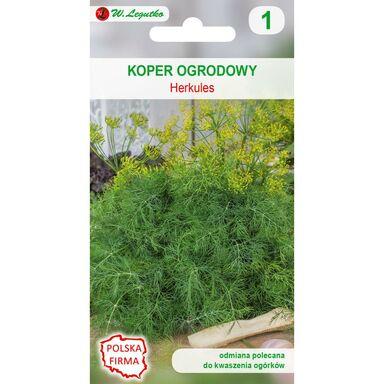 Koper ogrodowy HERKULES nasiona tradycyjne 5 g W. LEGUTKO