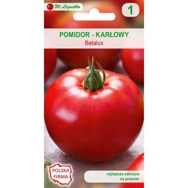 Pomidor gruntowy karłowy BETALUX W. LEGUTKO