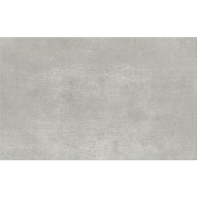 Glazura Beton Grey Mat 25 X 40 Artens