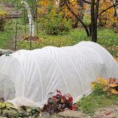 Folia Ogrodnicza Tunelowa 8 M Uv 4 Zielona Plandeki Folie Ochronne W Atrakcyjnej Cenie W Sklepach Leroy Merlin