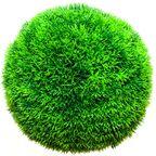 Kula asparagus sztuczny 22 cm HANMAR