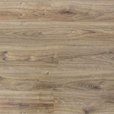 Panele podłogowe DĄB PUŁAWSKI AC4 8 mm PROMO FLOORING