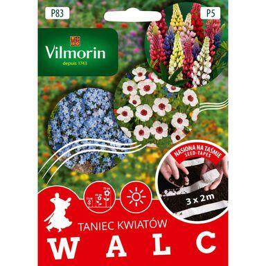 Nasiona kwiatów WALC Mieszanka kwiatów VILMORIN