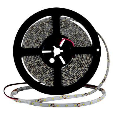 Taśma LED 16W IP44 900LM 65 POLUX