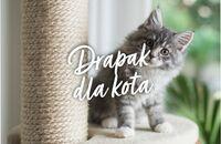 Kącik zabaw dla kota – zrób go samodzielnie!
