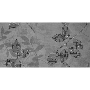 Dekor LAND 9 30 x 60 cm ARTENS