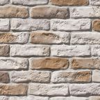 Kamień elewacyjny PENA Sahara 22 x 6,4 cm AKADEMIA KAMIENIA